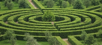 Image of topiary maze featuring tree and shrubs. Avoid the maze of potential factors with A/B website testing.